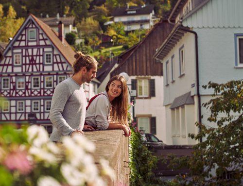 Imagebilder Stadt Alpirsbach